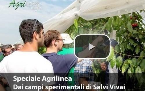 OPEN DAY SALVI VIVAI: GUARDA LA PUNTATA DI AGRILINEA.TV